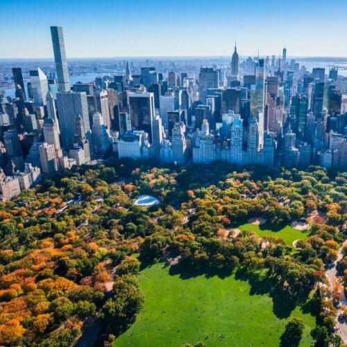 Board-Certified Plastic Surgeon in New York City